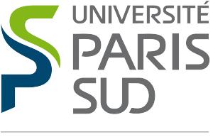 http://www.idest-paris.org/images/image/logo-univ_parissud.png
